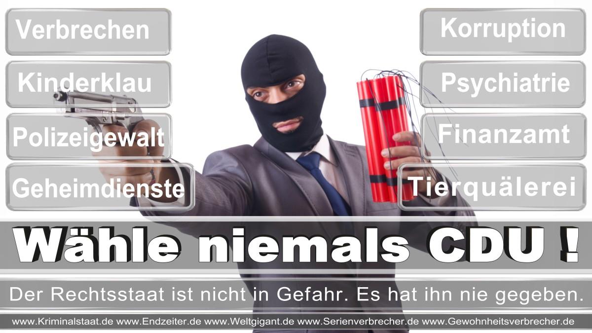 Bundestagswahl-2017-CDU (155)