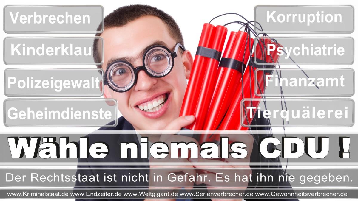 Bundestagswahl-2017-CDU (157)