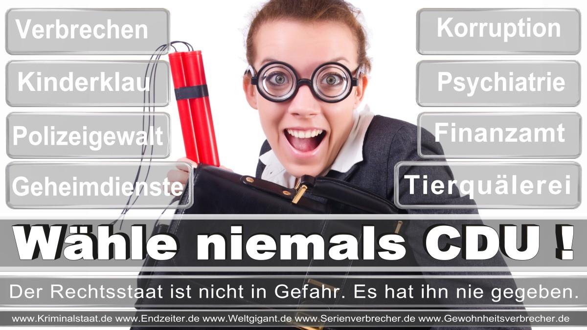 Bundestagswahl-2017-CDU (159)