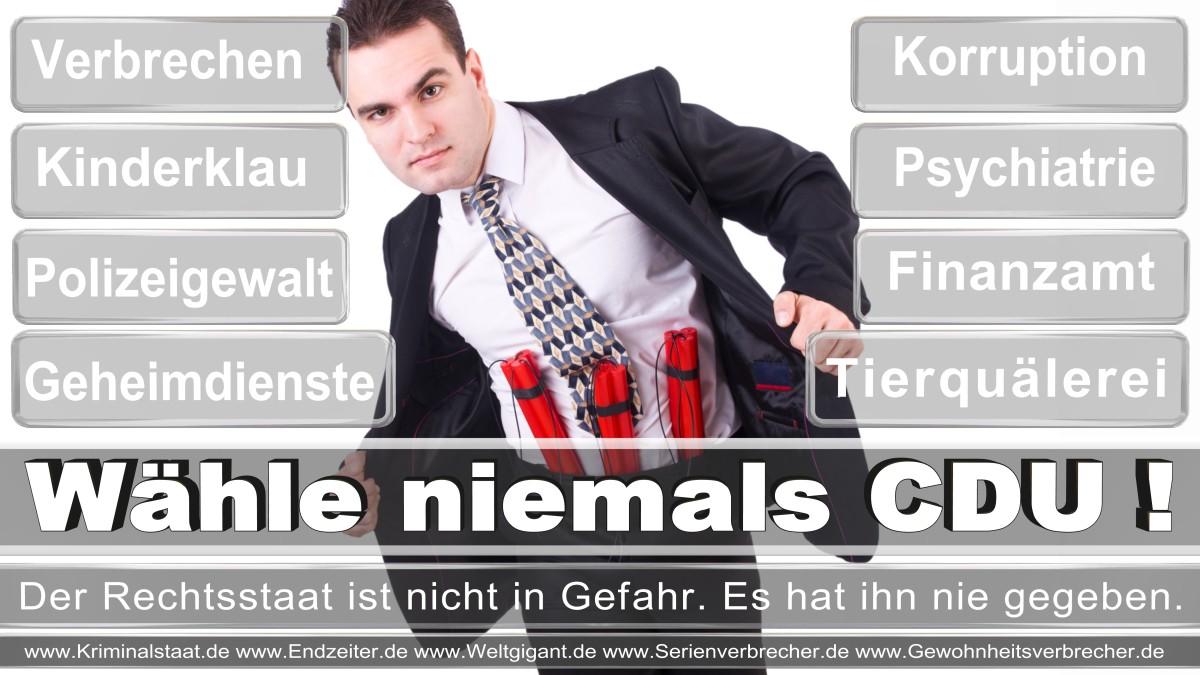 Bundestagswahl-2017-CDU (161)