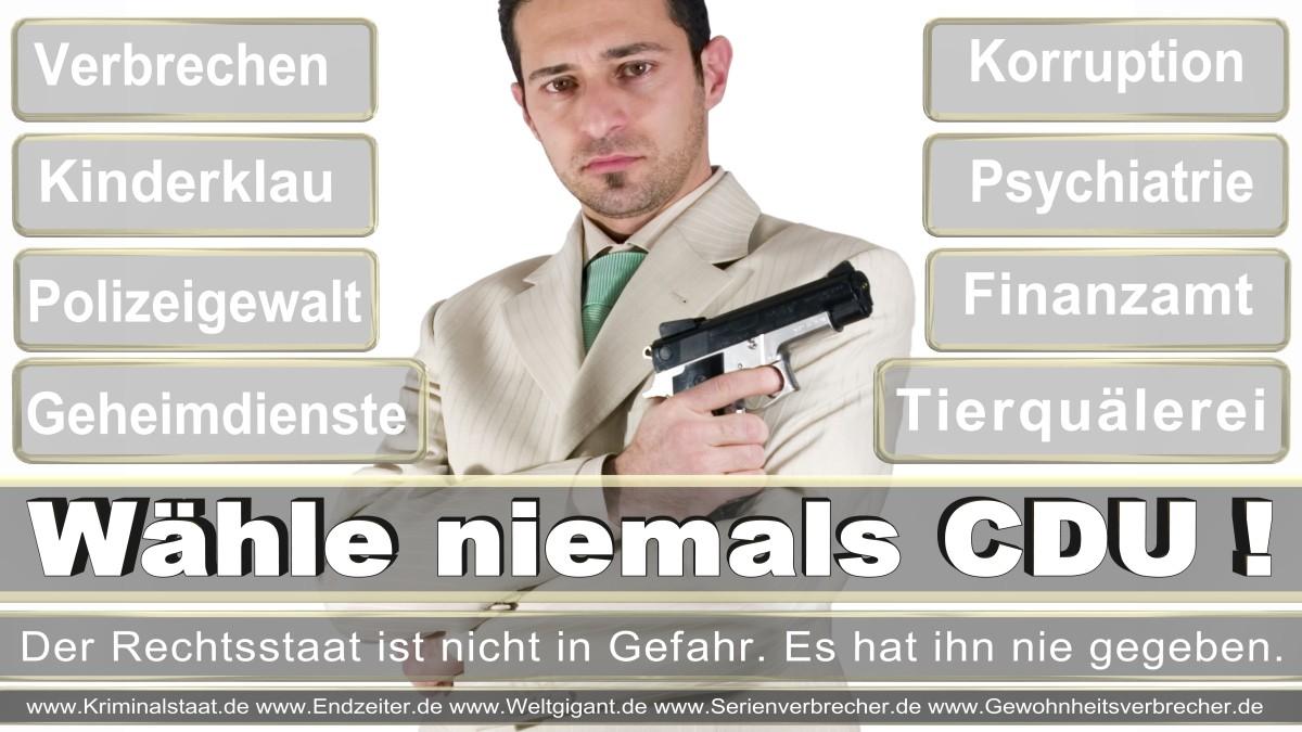 Bundestagswahl-2017-CDU (163)