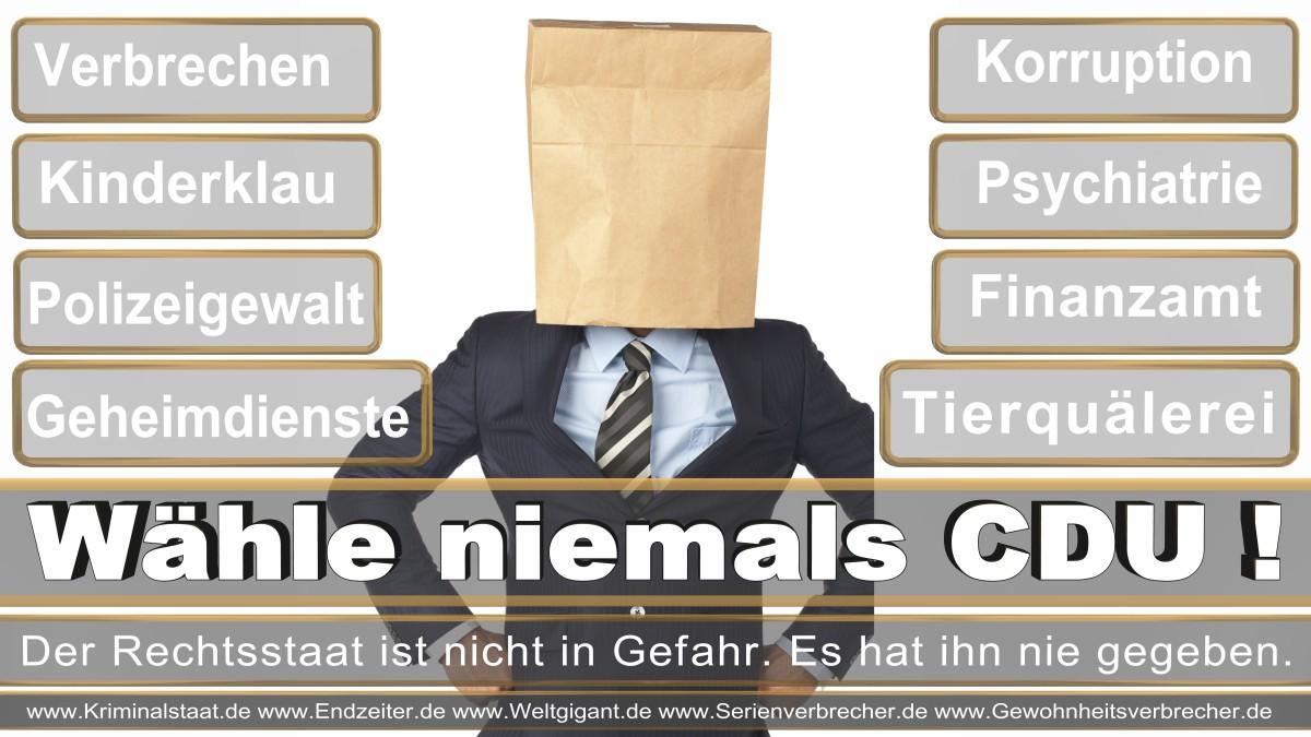 Bundestagswahl-2017-CDU (164)
