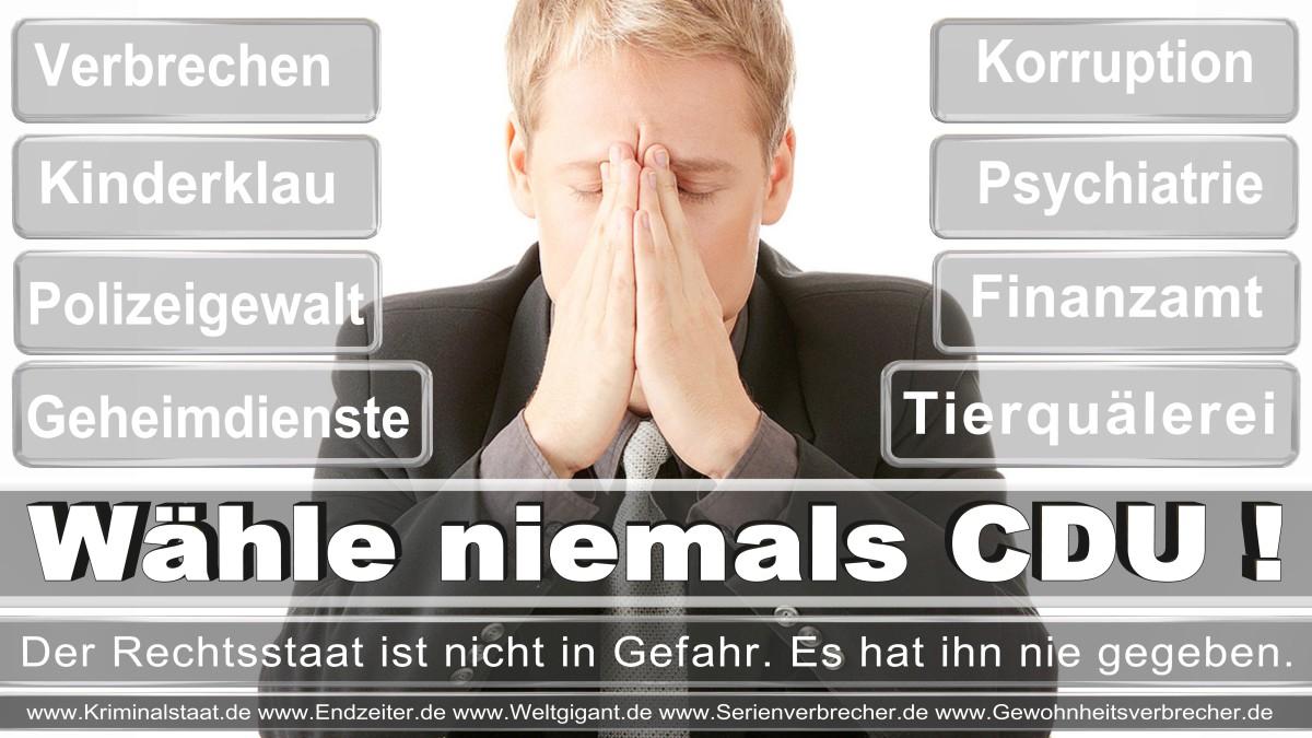 Bundestagswahl-2017-CDU (166)