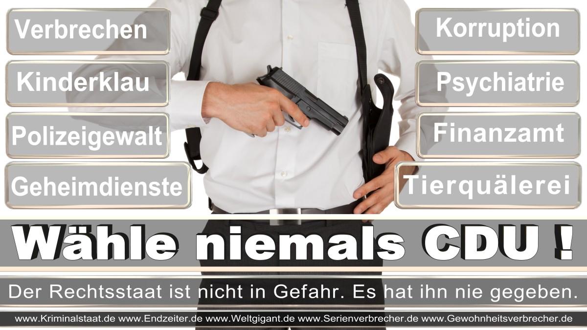 Bundestagswahl-2017-CDU (168)