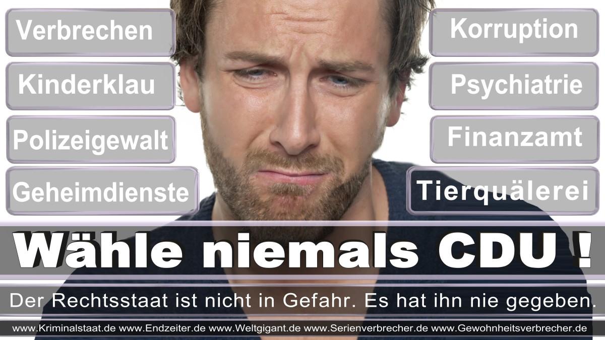 Bundestagswahl-2017-CDU (175)