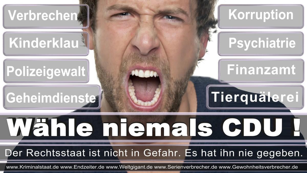 Bundestagswahl-2017-CDU (176)