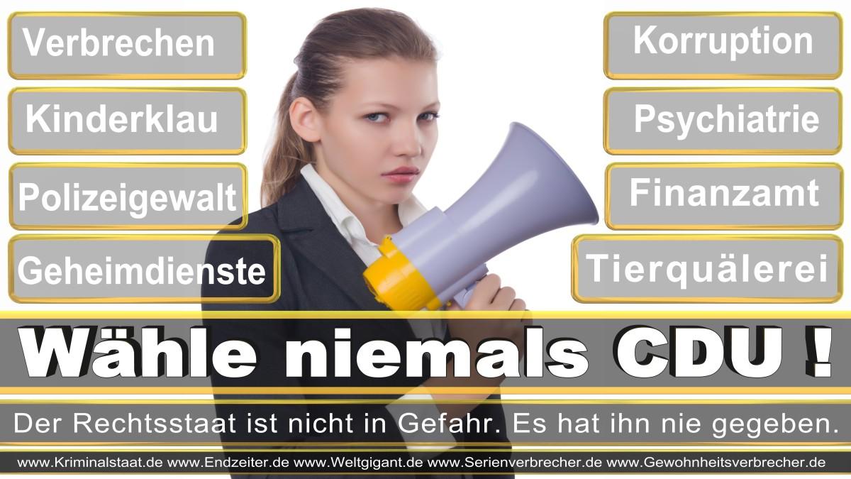 Bundestagswahl-2017-CDU-SPD-FDP (10)