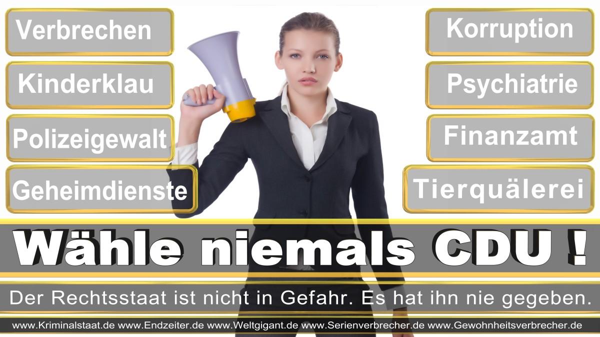 Bundestagswahl-2017-CDU-SPD-FDP (11)