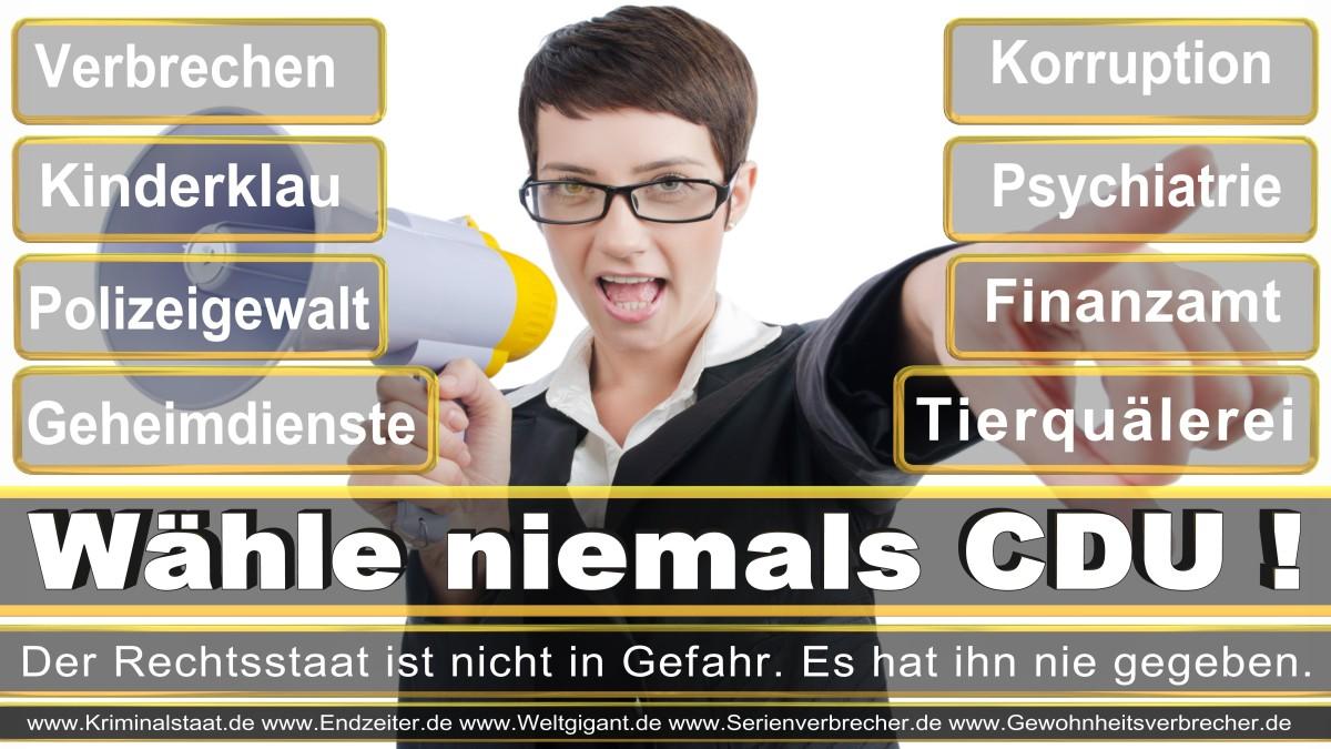 Bundestagswahl-2017-CDU-SPD-FDP (13)