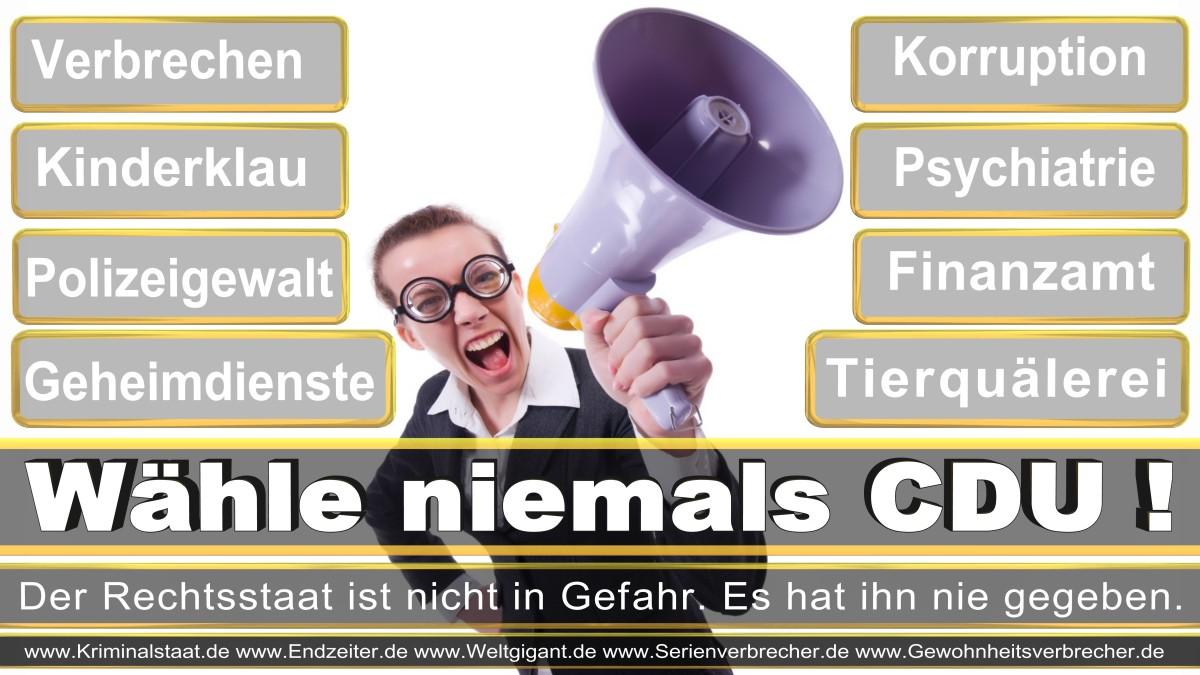 Bundestagswahl-2017-CDU-SPD-FDP (14)