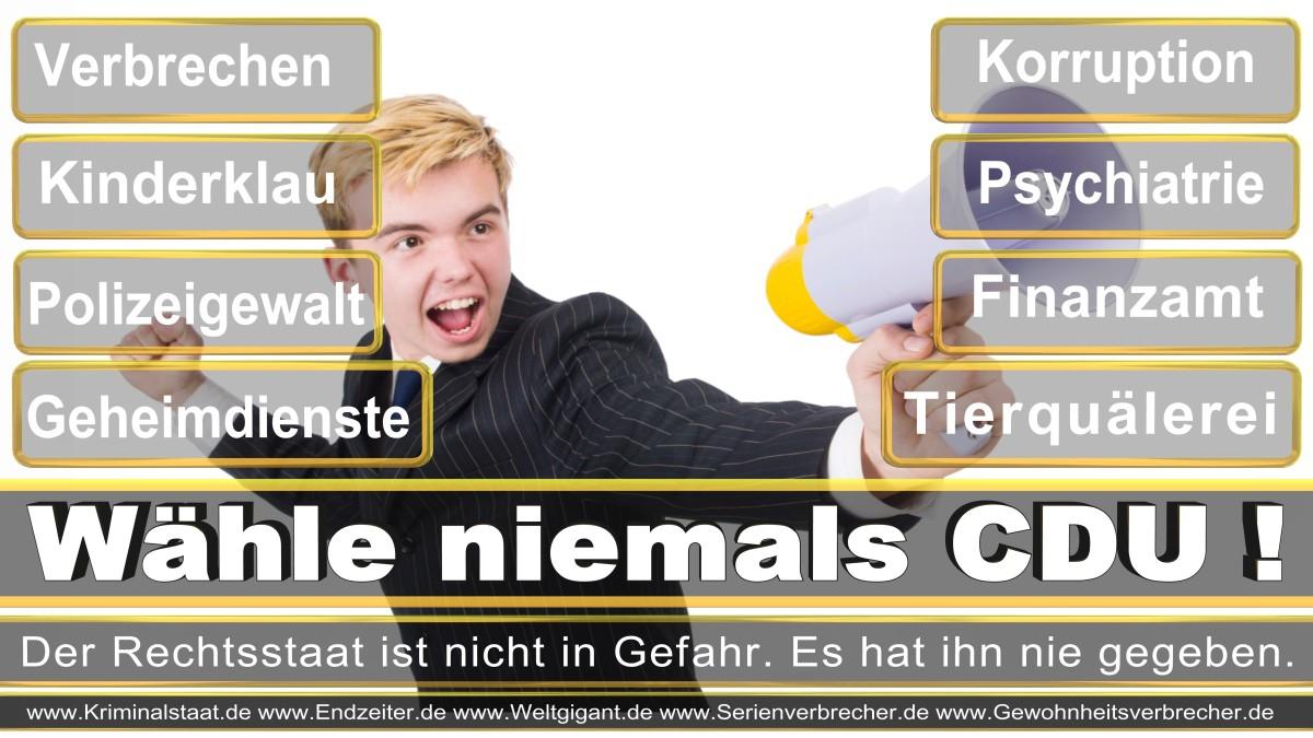 Bundestagswahl-2017-CDU-SPD-FDP (15)