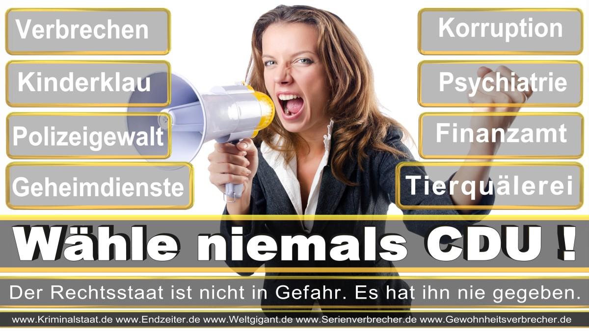 Bundestagswahl-2017-CDU-SPD-FDP (5)