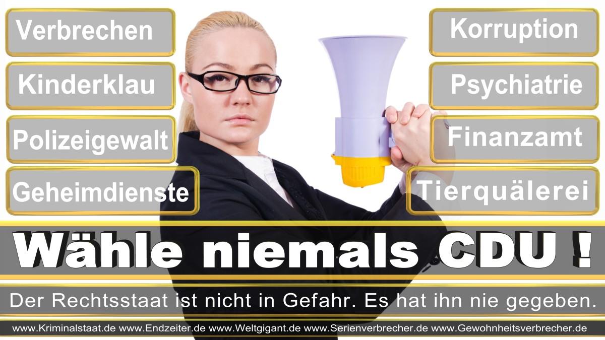 Bundestagswahl-2017-CDU-SPD-FDP (7)