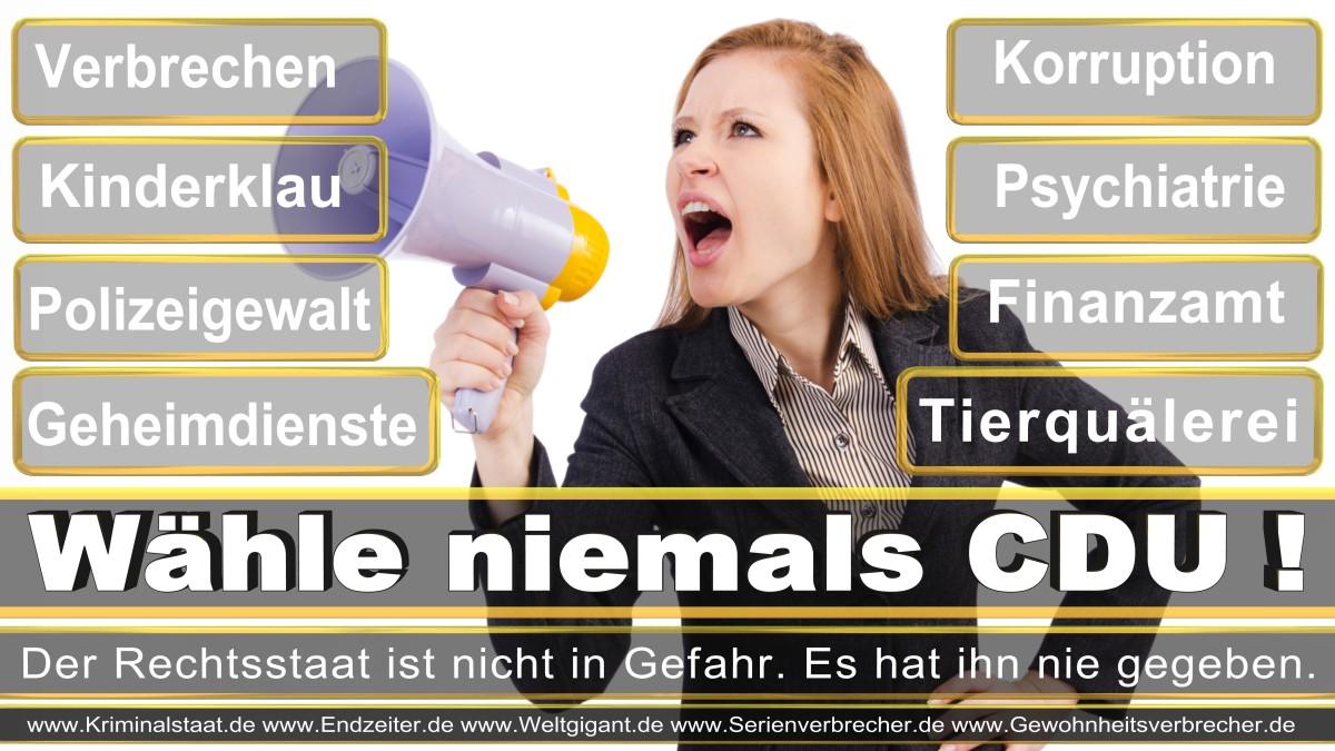 Bundestagswahl-2017-CDU-SPD-FDP (9)